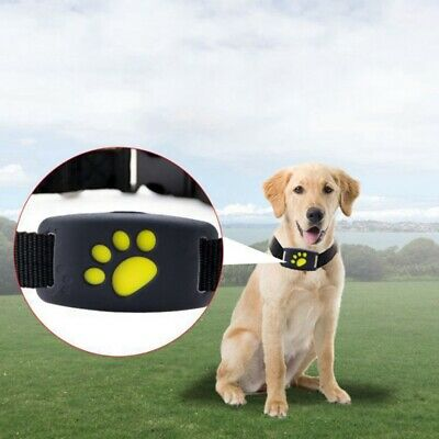 Smart Impermeable Collar para mascotas GPS Localizador Pet Real Time Tracker