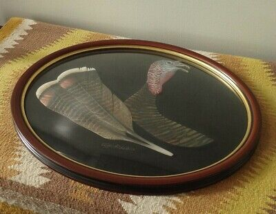 1994 CLIFF HOLLESTELLE Wildlife Wood Carving Carved Turkey Feathers/Head-Framed