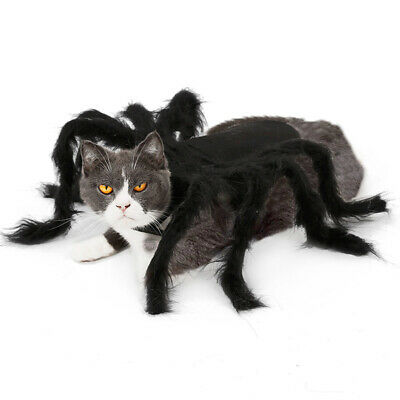 Halloween Pet Dog Costume Clothes Big Spider Costume Clothes For Dogs Cats NEW