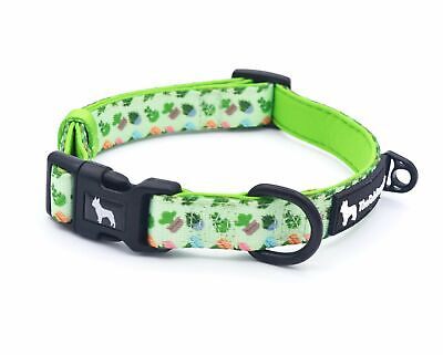 The Fab Frenchie® French Bulldog Cactus and Diamonds Padded Collar