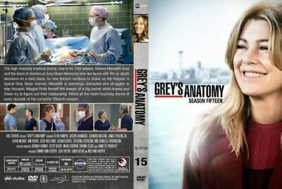 Grey's Anatomy Stagione 15 Originale In Italiano Dvd