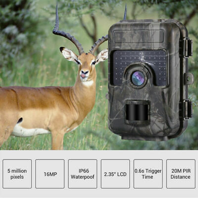 16MP Trail Camera IP66 Waterproof Outdoor Hunting Cam with IR Led Night Vision