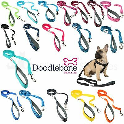 Doodlebone Bold Padded Nylon Dog Puppy Walking Leads - 12 Colours to choose from