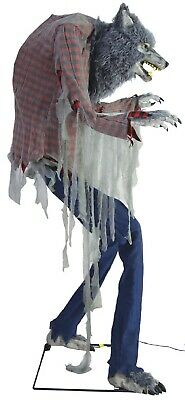 7ft Prowling Werewolf Animated Lights Sound Motion Halloween Decoration Prop