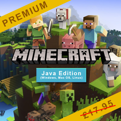 ⭐2 Minecraft: Java Edition Premium PC Accounts ⭐Name, Skin and Password change!⭐