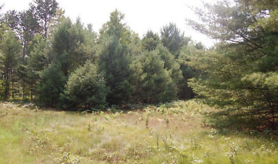 (6) Residential Lots, Warranty Deed, Road Frontage, Utilities, Build Home, RV,