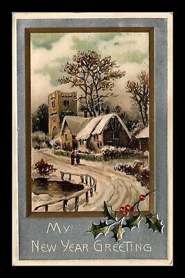 Dr Jim Stamps Us My New Year Greetings Embossed Topical Winter Scene Postcard