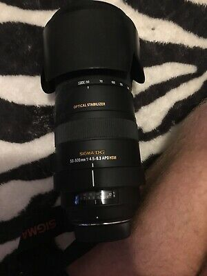 Sigma 50-500mm Lens with Optical Stabiliser