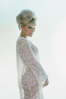 Elke Sommer Beautiful Secy Pose In See-Thru White Dress 1967 Large Poster