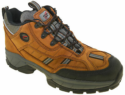 Red Wing Men's Steel Toe Waterproof Hiker Boot Style 6668