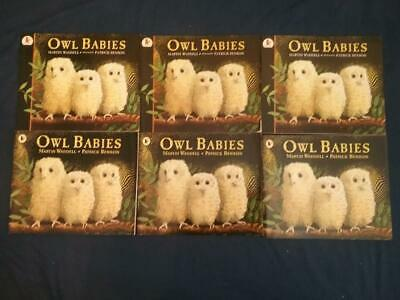 Teaching Story Resource 6 copies of Owl Babies by Martin Waddell Books for Sack