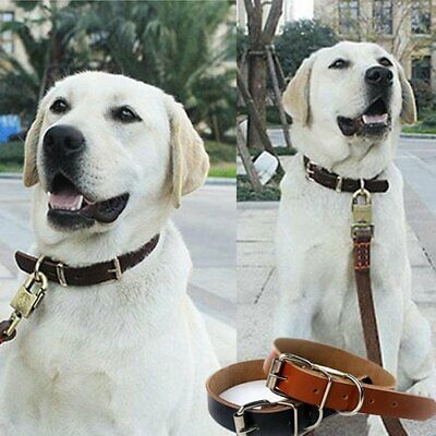 New Top Quality Handmade Pet Dog Collar Cow Leather Dog Collar Black 4 size