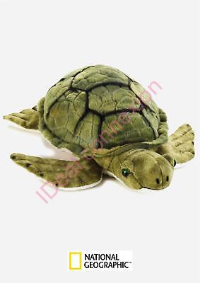 Peluche Tortue National Geographic