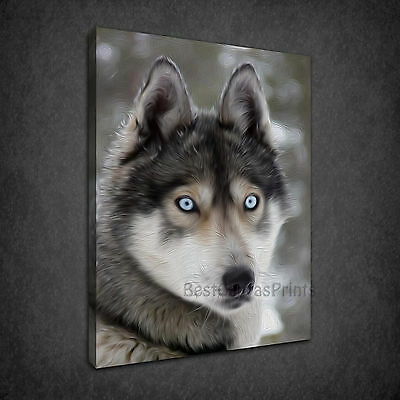 BLUE EYES HUSKY DOG OIL PAINTING STYLE BOX CANVAS PRINT WALL ART PICTURE