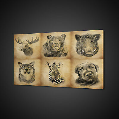 Vintage Sepia Set Of Animals Box Mounted Canvas Print Wall Art Picture Photo