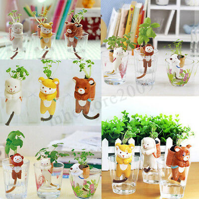 Self Watering Animal Planter Water Absorption Cute Pot Plant Bonsai Home Decor