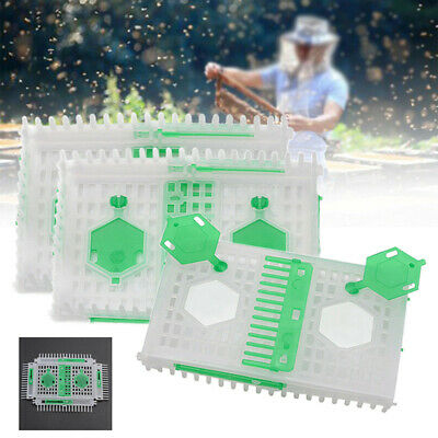 Queen Bee Needle Cage Beekeeping Equipment Catcher Trap Container Plastic Tools