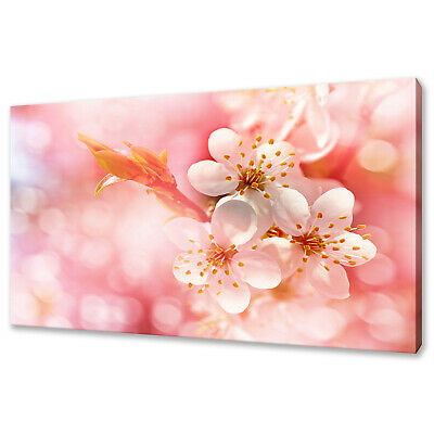 Beautiful Flowering Brunch Of Cherry Blossom Pink Canvas Print Wall Art Picture