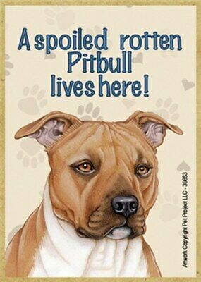 """Brown Pit A Spoiled Rotten Pitbull lives here Dog Sign 5/""""x10/"""" Wood Plaque 104"""