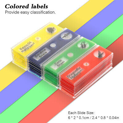 12x Plastic Prepared Microscope Slides Animals Insects Plants Vegetables Sample
