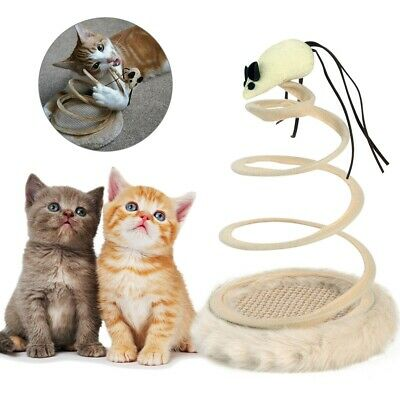 NEW Funny Cat Toy Spiral Spring Tray Cats Pet Play Training Interactive Supplies