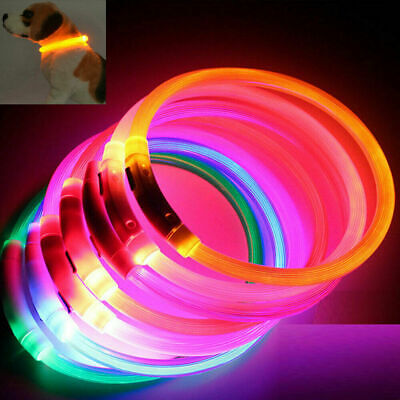 USB Rechargeable USB Waterproof LED Flashing Light Band Safety Pet Dog Collar