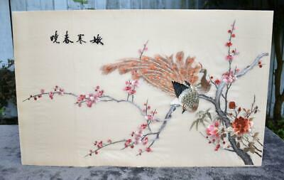 Fine Vintage Chinese / Japanese Hand Embroidered Silk Panel - Peacock Signed