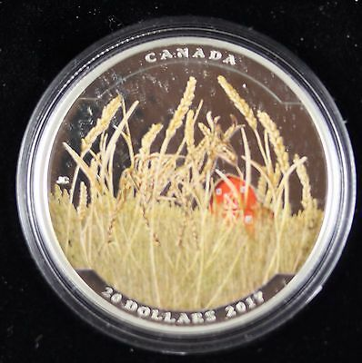 **2017** Landscape Illusion : Pronghorn,  RCM Proof Silver $20 Dollar Coin