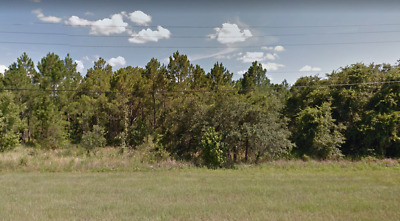 1.10 Acres, Foreclosure Ready, Polk County, No Reserve, Mixed Use, Low Taxes,