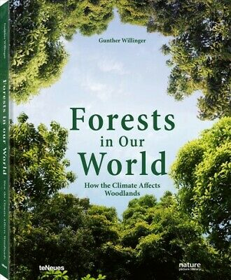 Forests in Our World : How the Climate Affects Woodlands, Hardcover by Willin...