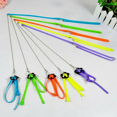 Adjustable Parrot/Bird Animal Harness Multicolor Leash Rope Anti-bite Train ^~YI