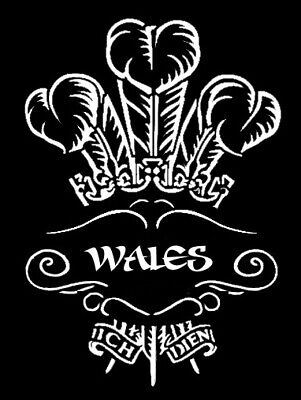 high detail airbrush stencil WALES 5  FREE UK POSTAGE