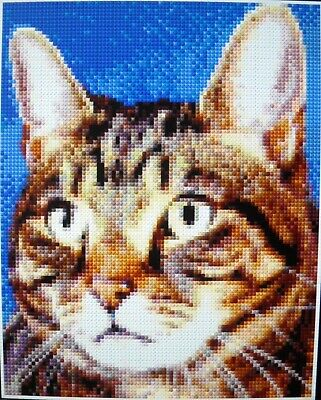 TABBY CAT ~ Counted Cross Stitch KIT #D1198