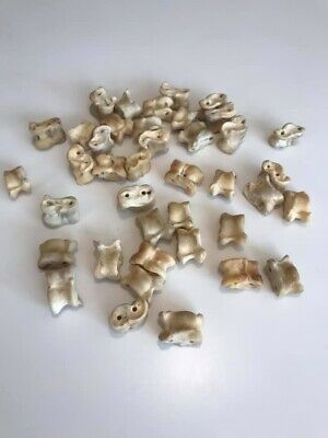 40pcs Mongolian Traditional Shagai Game Sheep Ankle Bone KNUCKLEBONES GAME
