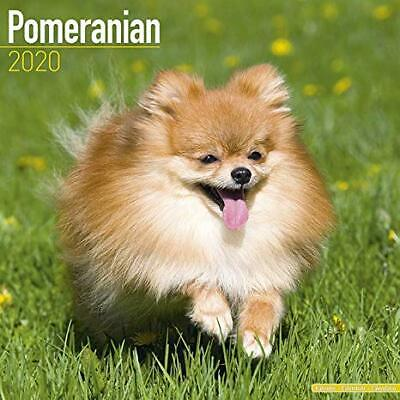 THE DOG 2020 Calendar Pomeranian ARTLIST Collection Dogs THEDOG from Japan