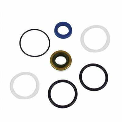 Power Steering Cylinder Seal Kit New Holland TC29 TC34DA TC30 Ford 1520 1320