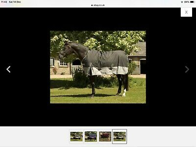 Winter Turnout Horse Rug Heavyweight
