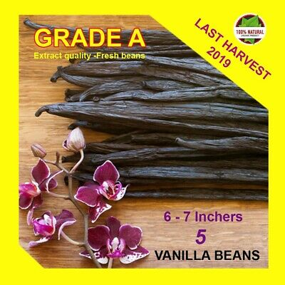 "5 Extract Grade A Madagascar Bourbon Whole Vanilla Beans-Pods 5""-7"" Inchers"