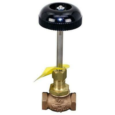 Allpoints Select - 561101 - 3/8 in Steam Supply Valve