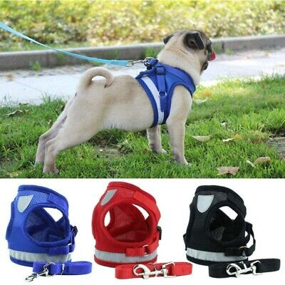 Puppy Small Cat Dog Harness and Walking Leads Set Pet Breathable Reflective Vest