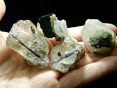 Lot of FOUR! Small Green Tourmaline Crystal Clusters in Quartz Crystals! 112gr