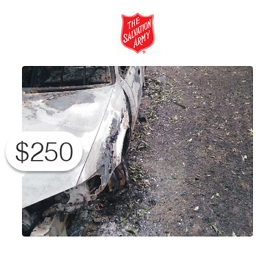 $250 Charitable Donation For: Australian Wildfire Relief