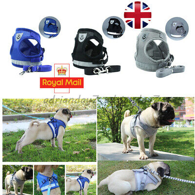 Puppy Small Dog Cat Harness and Walking Leads Set Pet Breathable Mesh Vest UK