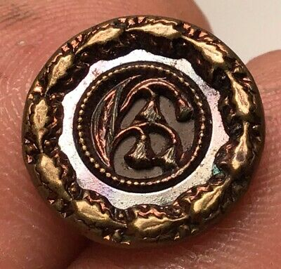 Antique Brass Victorian Picture Button With  Reflector Border Tinted Floral