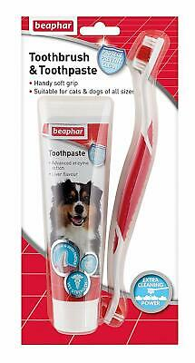 Beaphar Dog Puppy Cat Toothbrush and Toothpaste Kit, Dental Breath Care