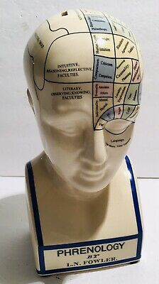 "PHRENOLOGY by L.N. FOWLER Lundgate Circus London Porcelain Head 11 1/2"" Tall"