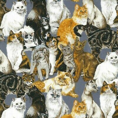 100% Cotton Fabric Nutex Cats Corner Tabby Cat Kittens Meow Patchwork