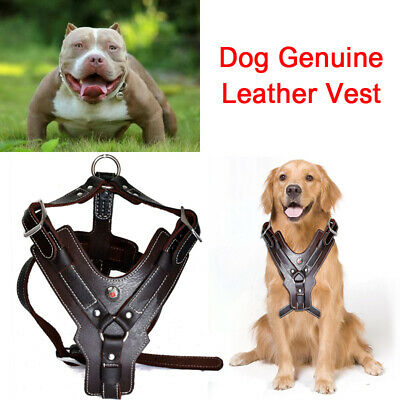 Genuine Leather Large Dog Harness Durable Heavy Duty Vest for Pit Bull Boxer
