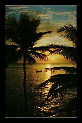 Dr Jim Stamps Us Florida Sunset Ocean Palm Trees Chrome Postcard 1967