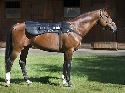 PEMF Therapy Equine Horse Back Blanket Health Injury Treatment